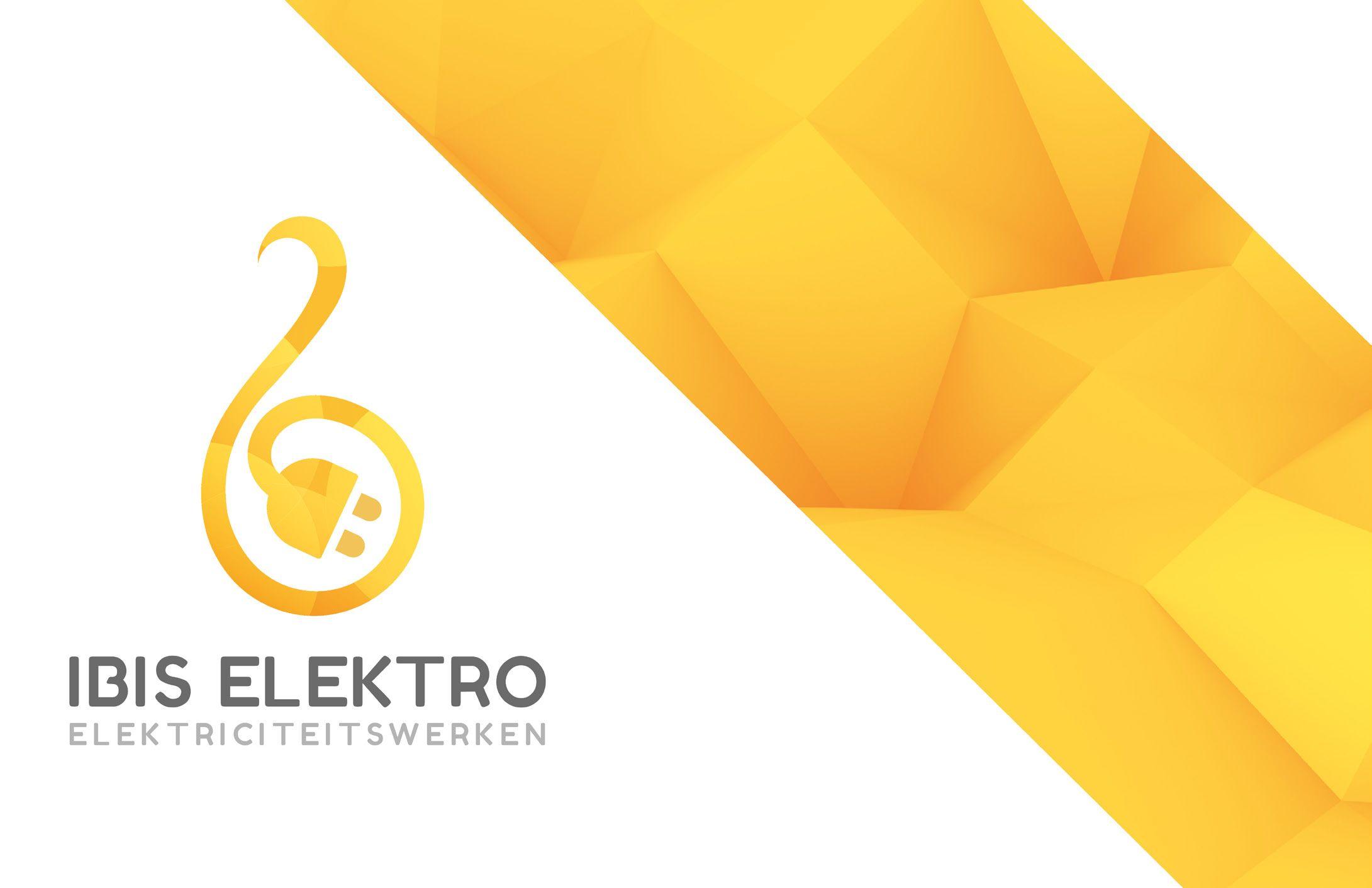 Ibis_Elektro3