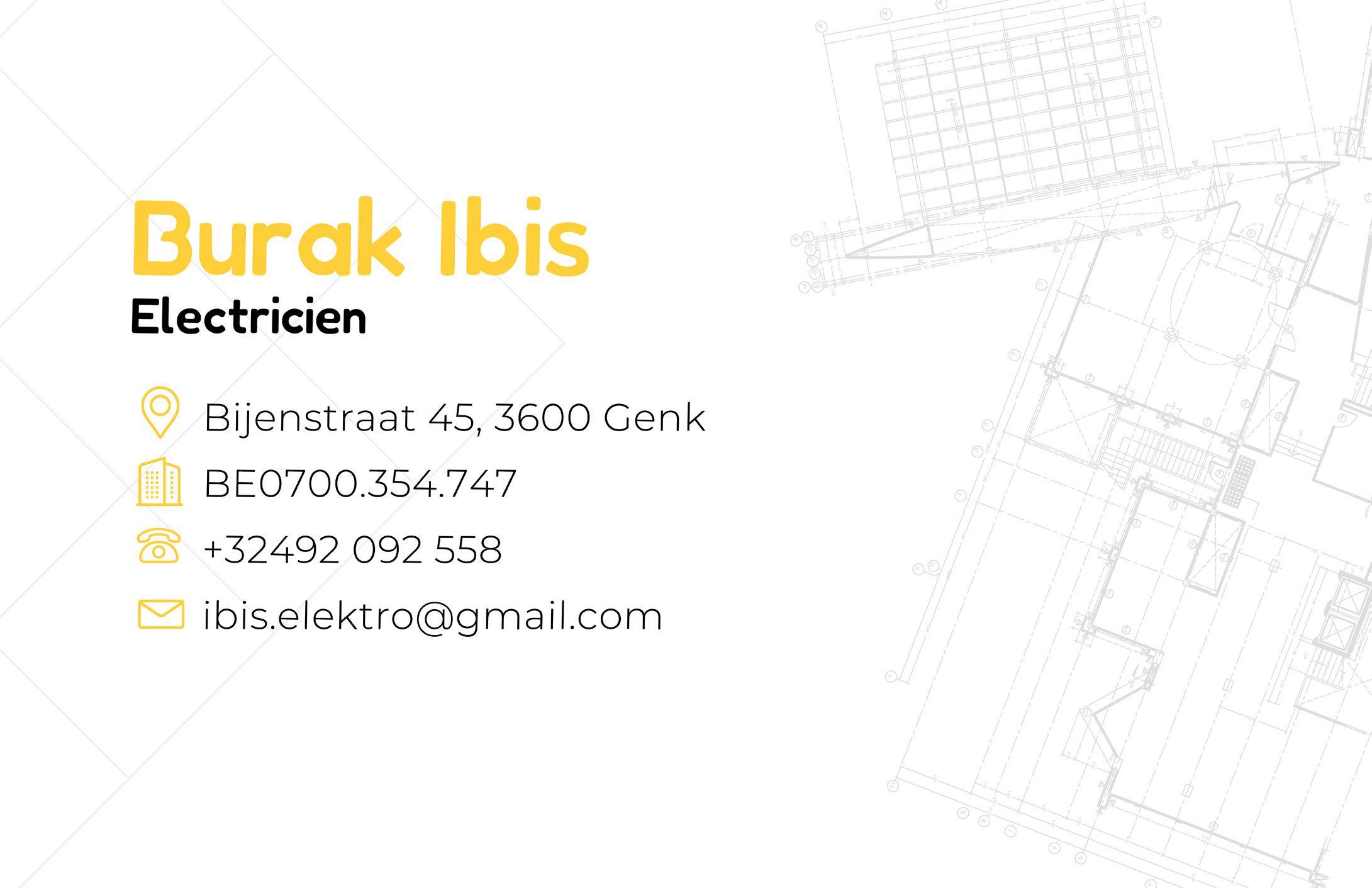 Ibis_Elektro4